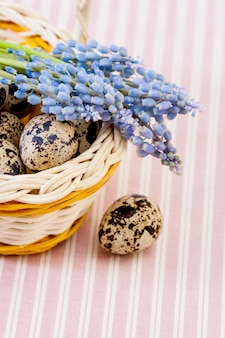 ウズラの卵
