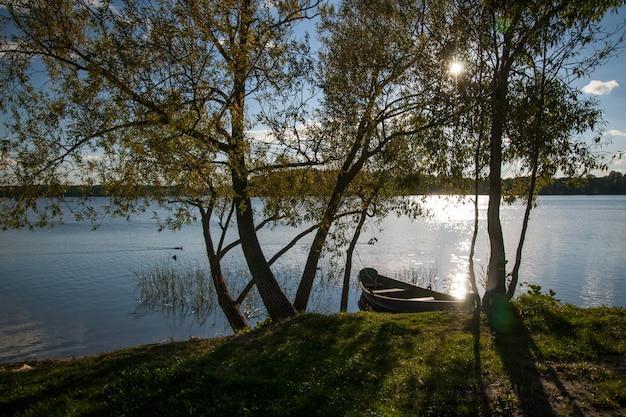 Красивое озеро в летний день