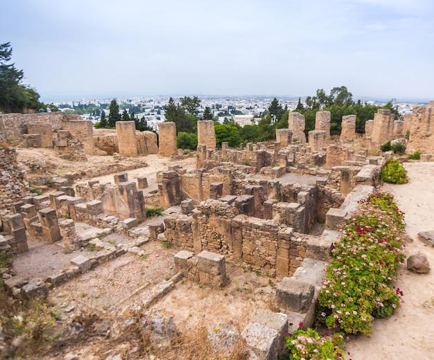 チュニジア。