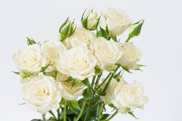 白い背景の上の白いバラの花束