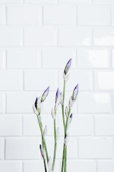白いレンガの壁の背景に吹き飛ばされていない花アイリスの花束をフレーミング垂直