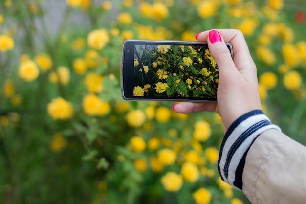 携帯スマートフォンで花のスナップショットを作る