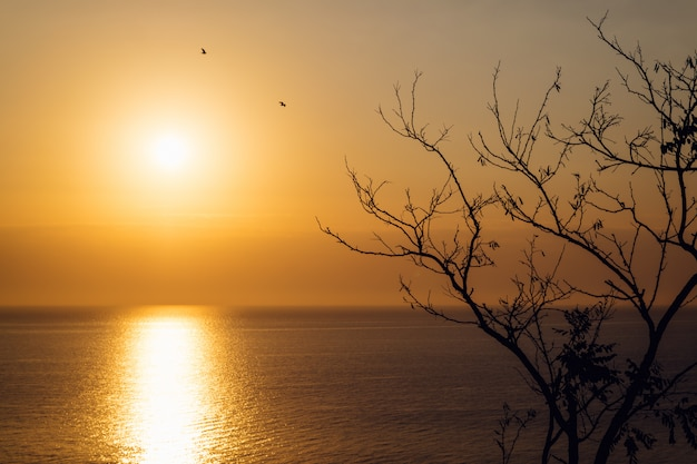 秋の海の上の日の出