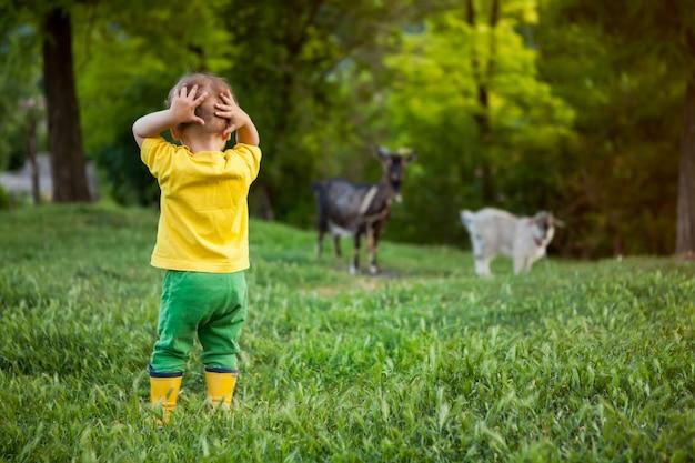 明るい服を着た小さな男の子が彼の頭の後ろに両手を掴んだ