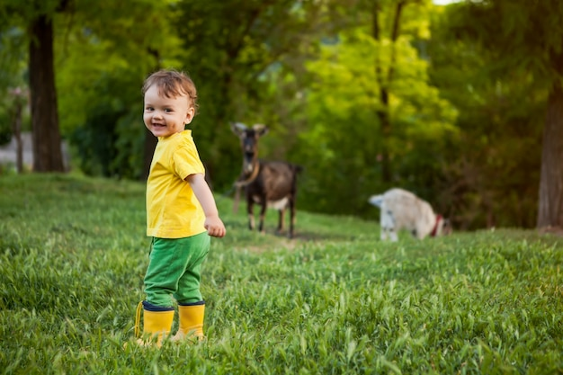 ヤギと小さな羊飼い、自然の中で明るい服を着た少年
