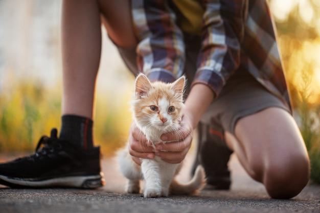 Счастливый малыш с котенком в руках в природе на лето.