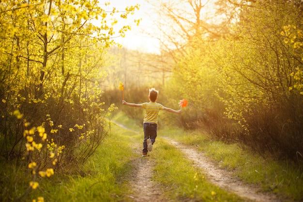 手で風車を押しながら実行している夏の晴れた日の小さな男の子。背面図
