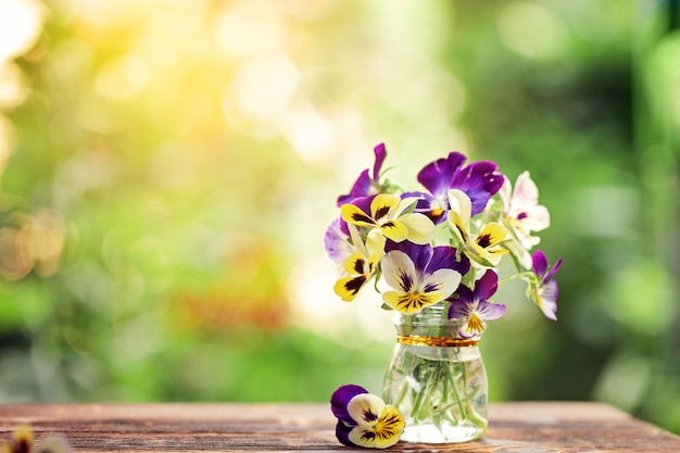 Букет красочных анютиных глазок на зеленом фоне природы. красивые и нежные цветы.