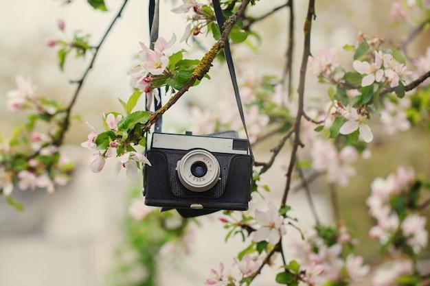 古いレトロカメラは晴れた春の日にリンゴの木にハングします