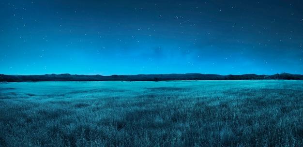 夜の牧草地の風景