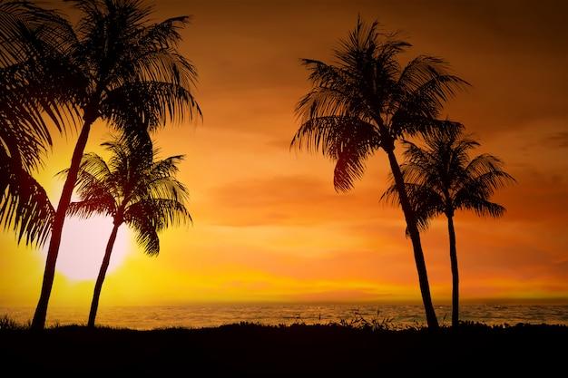 夕暮れ時と夕日の眺め