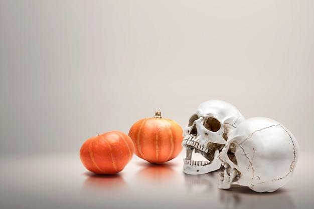 カボチャと人間の頭蓋骨