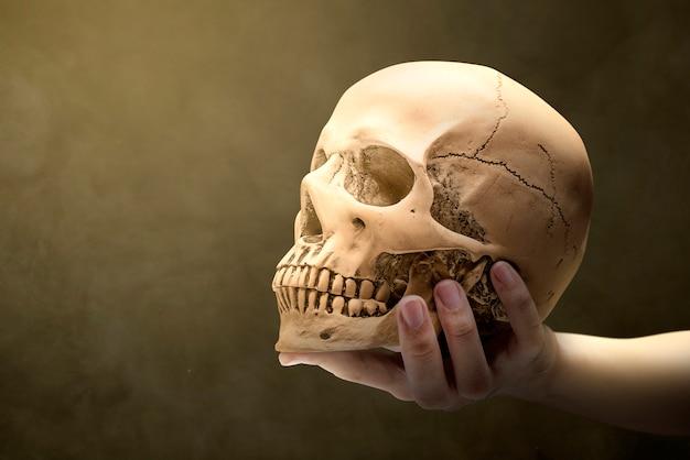 人間の頭蓋骨を持っている手
