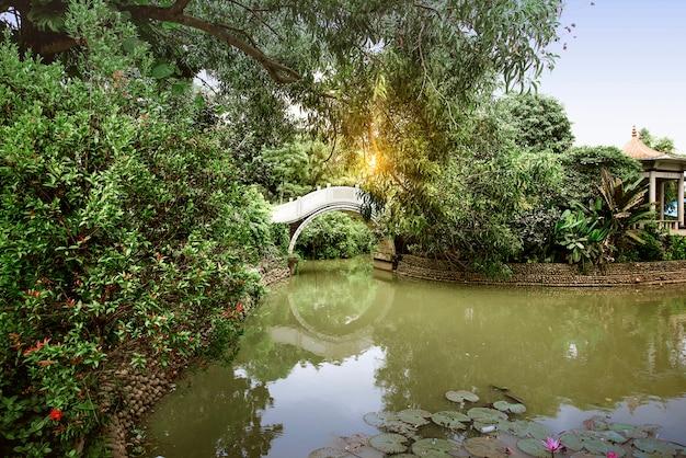 池と公園の木々と中国のアーチ橋