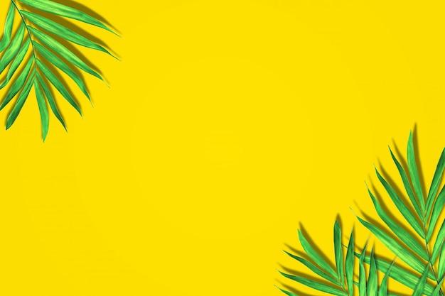 Пальмовые листья в ярком цвете