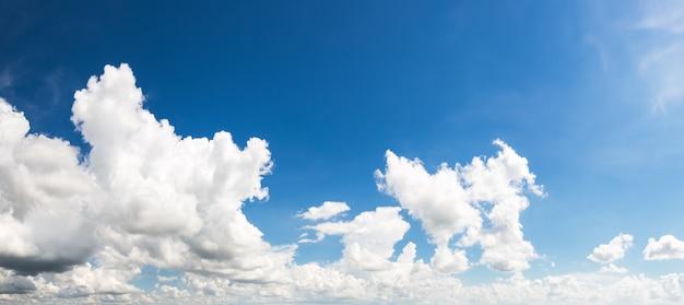 青い空を雲します。