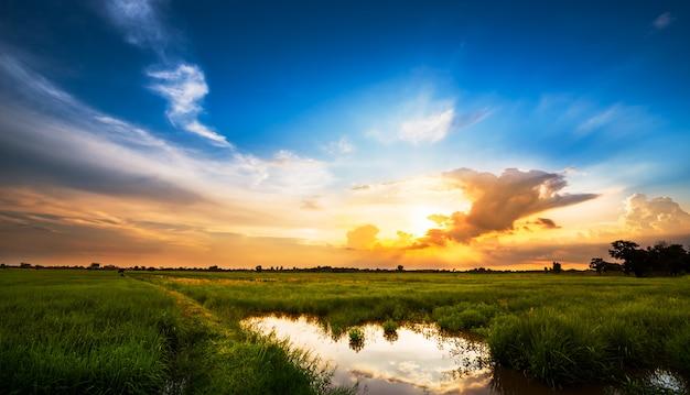 田園風景の夕日