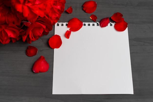 Пустой лист бумаги для текста