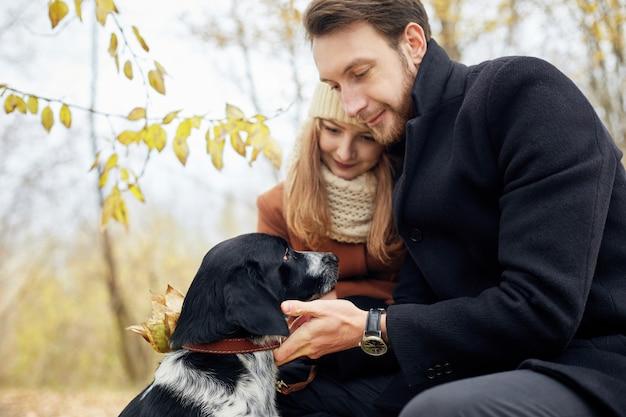 愛情のあるカップルは、スパニエル犬と秋の森公園を歩く