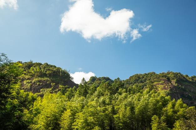 山のピーク範囲の風景