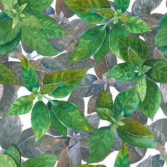 水彩の手描きのシームレスな緑と紫のハーブのパターン。