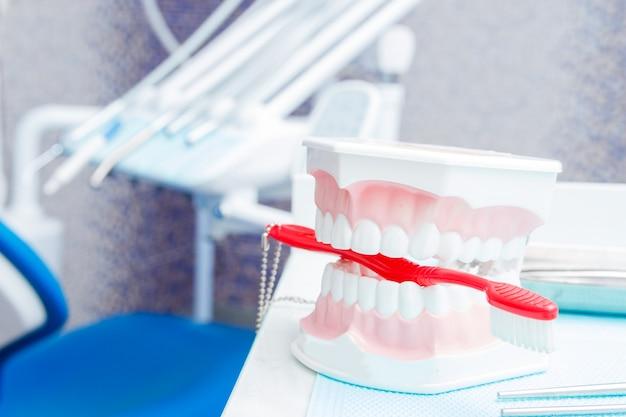 白い歯のダミーと歯科医院の器具。