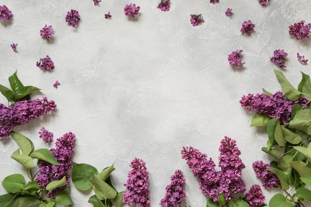 Рамка фиолетовой сирени цветет с космосом для текста в взгляд сверху.