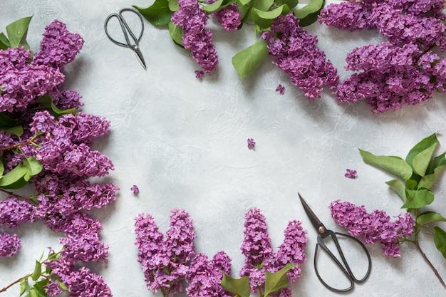 Рамка из фиолетовых цветов сирени и бонсай ножницы для флористики с пространством для текста в вид сверху.