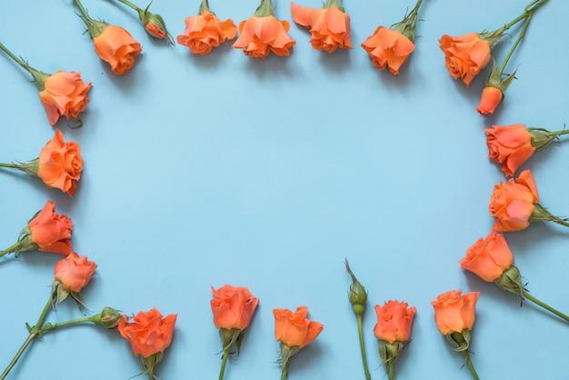 Нежные оранжевые розы расположены на синем фоне. вид сверху. цветочный узор. копировать пространство весна.