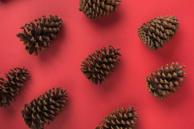 多くの自然なマツ円錐形パターン