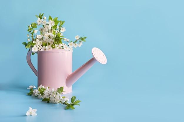 装飾的な水まき缶で果樹に咲く白い花束。園芸春のコンセプト。