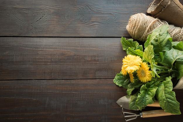 ガーデニングツール、黄色の花、木製のテーブルの土。春と庭で働きます。上面図。趣味。園芸。