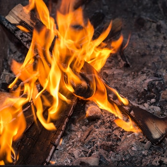 自然の中で火災します。グリルのための森でたき火。
