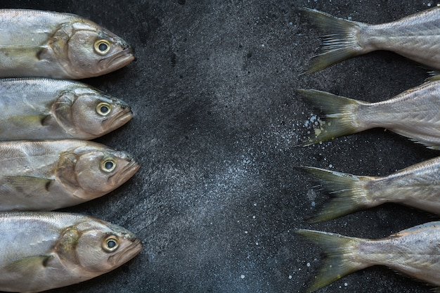 黒地に黒海のブルーフィッシュ。テキスト用のスペースを持つ魚のパターン。