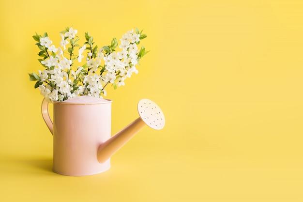 装飾的なじょうろで果物の木に咲く白い花束。園芸春のコンセプトです。
