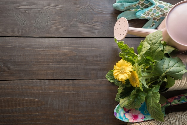 園芸工具、花、木のテーブルにロープ。春は庭で働きます。