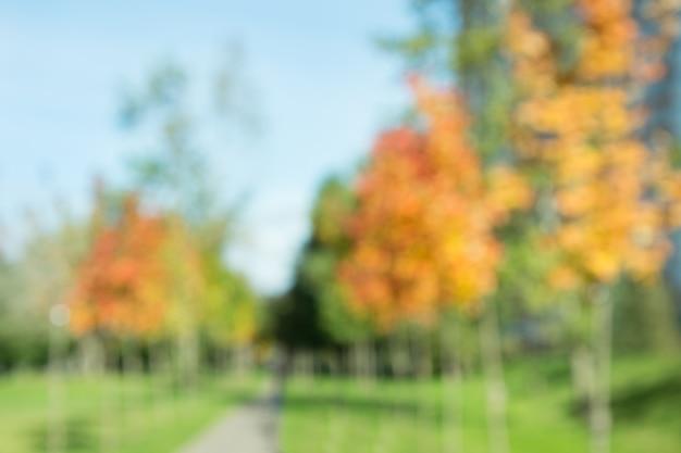公園の秋の風景。ぼやけています。ボケ
