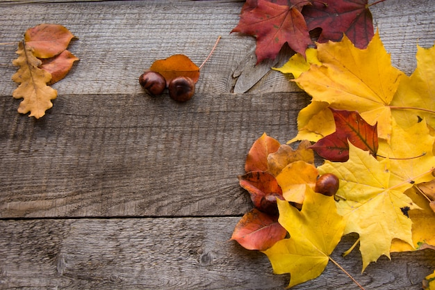 秋の静物木の板に葉を乾燥させます。上面図。フラットレイアウトとコピースペース。