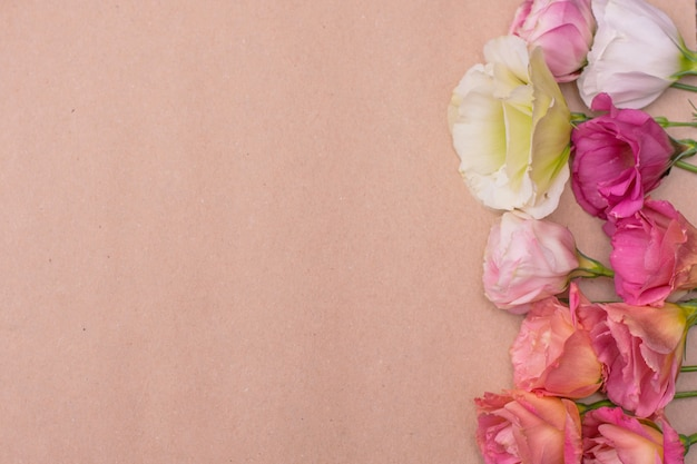 クラフトブラウン紙の背景にフラットレイアウトの白とピンクのトルコギキョウの花を入札します。