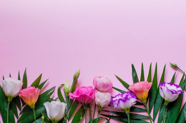 ヤシの葉、フラットレイアウトとピンクの背景に白とピンクのトルコギキョウの花を入札します。