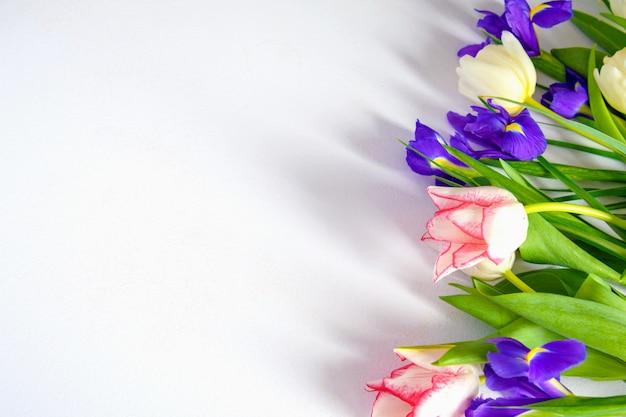 カラフルな春のチューリップと白い背景の上のアイリスの花
