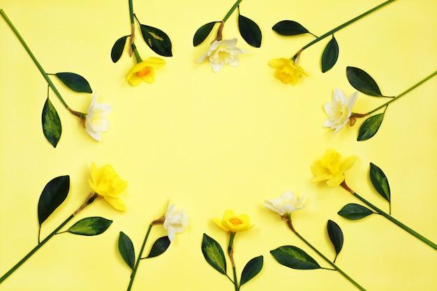 黄色の背景に水仙または水仙の花のフレーム