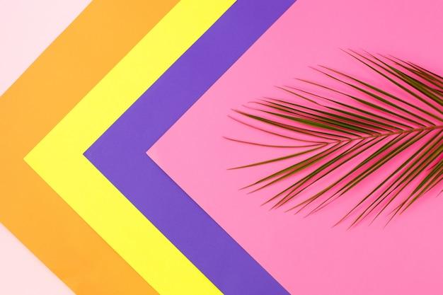 Зеленые тропические листья пальмы