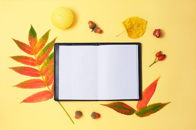 Красивые высушенные листья и тетрадь на желтой предпосылке.
