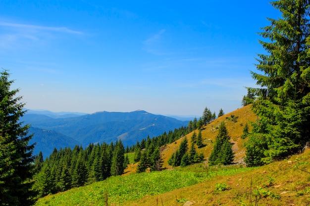 山の中の自然、美しい風景、夏の美しい山の風景、カルパチア山脈。