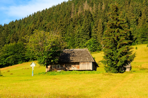 美しい山の風景、カルパティア山脈、山の中の村。