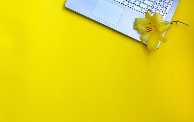 美しい黄色いユリの花と黄色のノートパソコン
