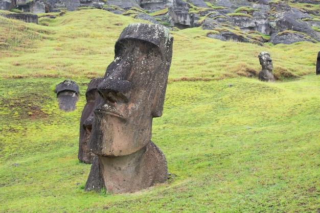 Моаи в рано рараку, остров пасхи, рапа-нуи.