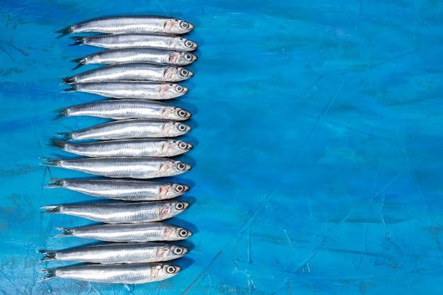 シーフード。小さな海の魚、アンチョビ、青い背景にイワシ。コピースペース付き