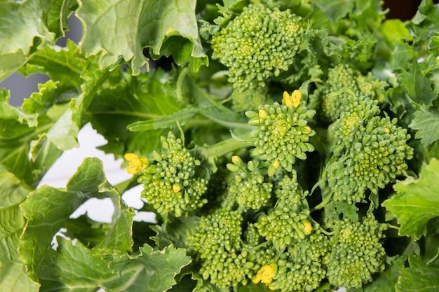 白い木製の背景に食べる準備ができて生有機カブ野菜をクローズアップ
